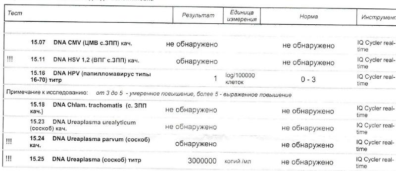 ureaplasma и цистит