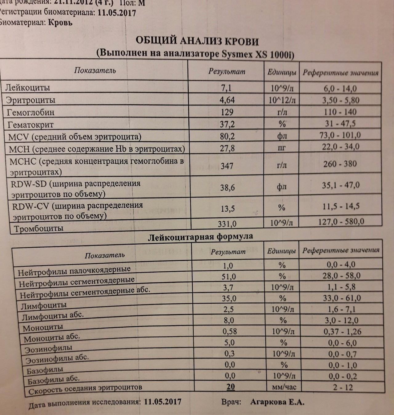 Анализ крови при беременности норма таблица