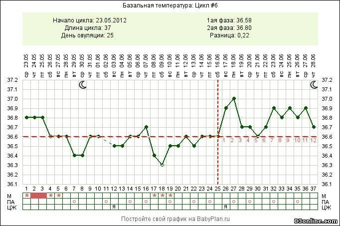 график бт с двумя овуляциями фото тем