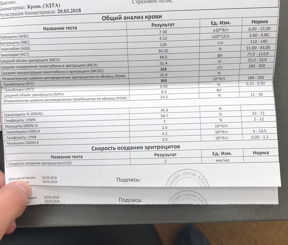 Mchc результаты анализа крови уши от чего стреляют