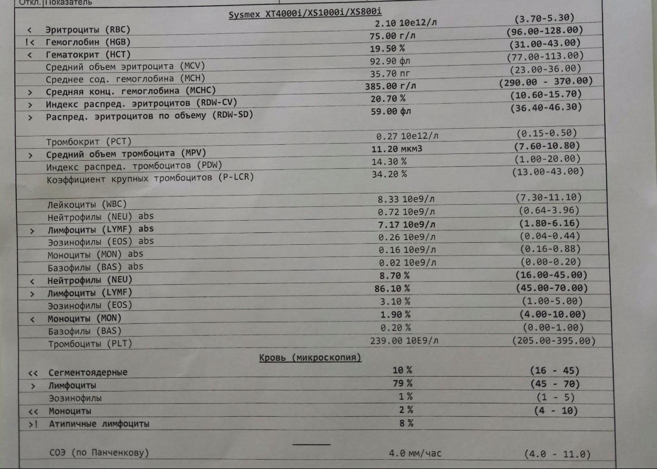 У крови детей моноциты нормы анализа москва анализы группа крови