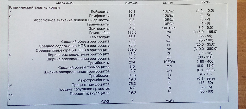 Беременна в 16 17 67