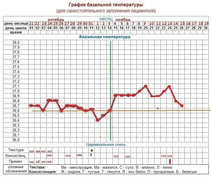 фото графиков базальной температуры двери