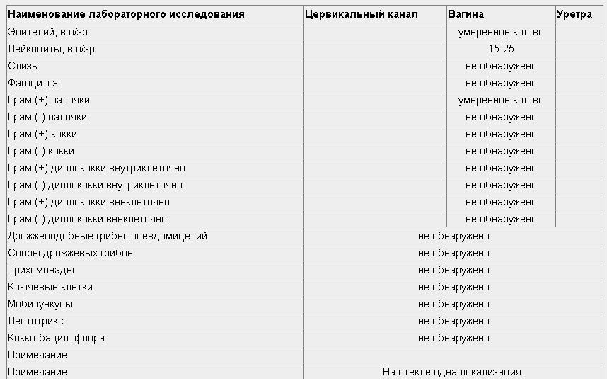 epiteliy-v-bolshom-kolichestve-vlagalishe-fagotsitoz