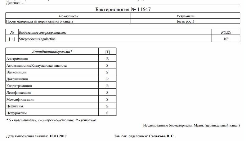 Где можно сдать анализы в Калининграде? Адреса медицинских