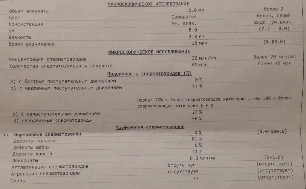 metodika-podscheta-spermogrammi