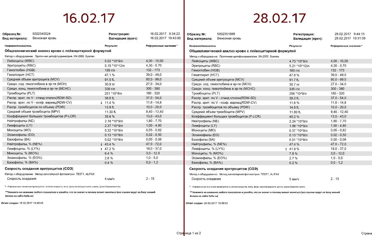 Общий анализ крови - свидетель нарушений в организме 29