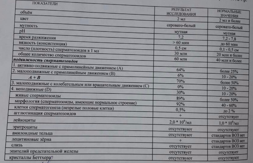 kursk-spermogramma-rasshifrovka-rezultata