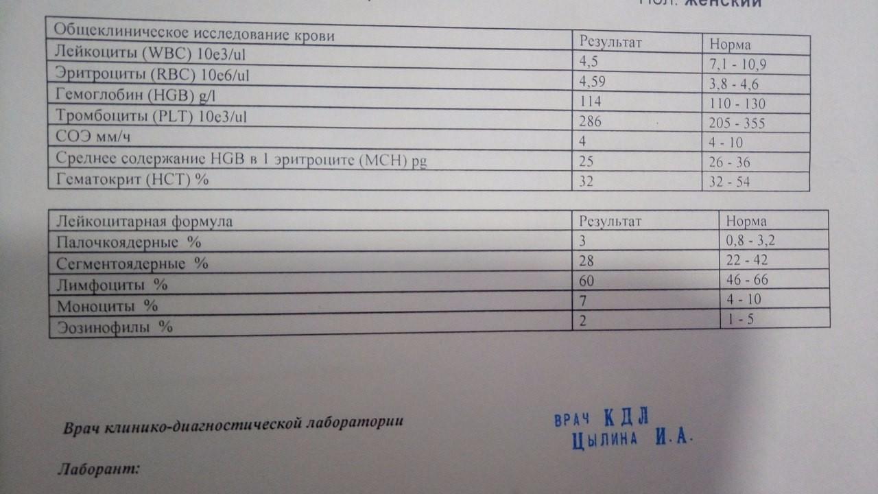 Лейкоциты 10 в крови у беременных 34